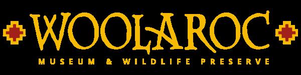 Woolaroc Museum, Colt Collection